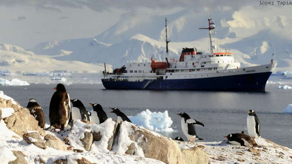 MS Ushuaia Antarktis Reise: Klassische Antarktis