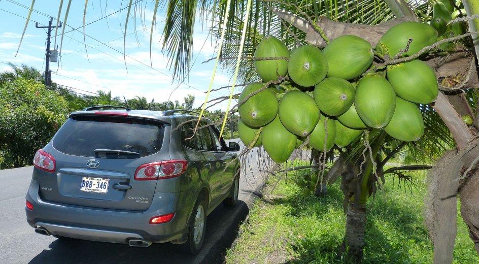 Costa Rica Mietwagenreise Karibik-Osa-Pazifik