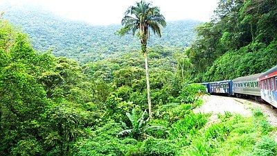 Curitiba, Trem da Serra do Mar und Ilha do Mel