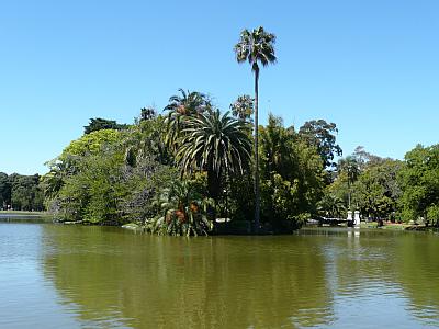 Flora und Fauna in Argentinien, Buenos Aires