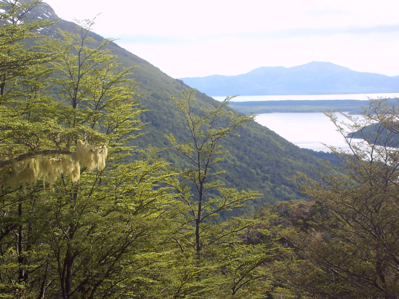 Lago Escondido und Lago Fagnano, Ushuaia, Argentinien