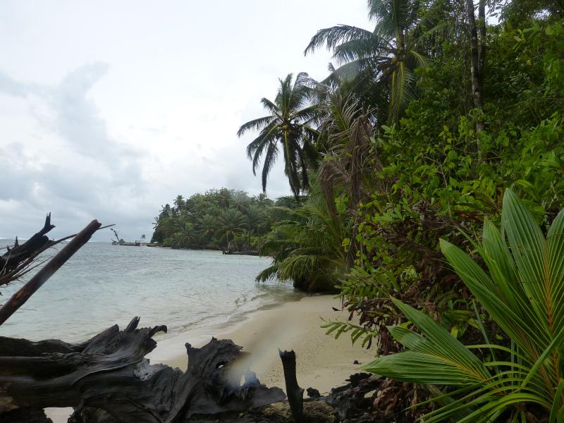 Strand Zapatilla Inseln Bocas del Toro, Panama