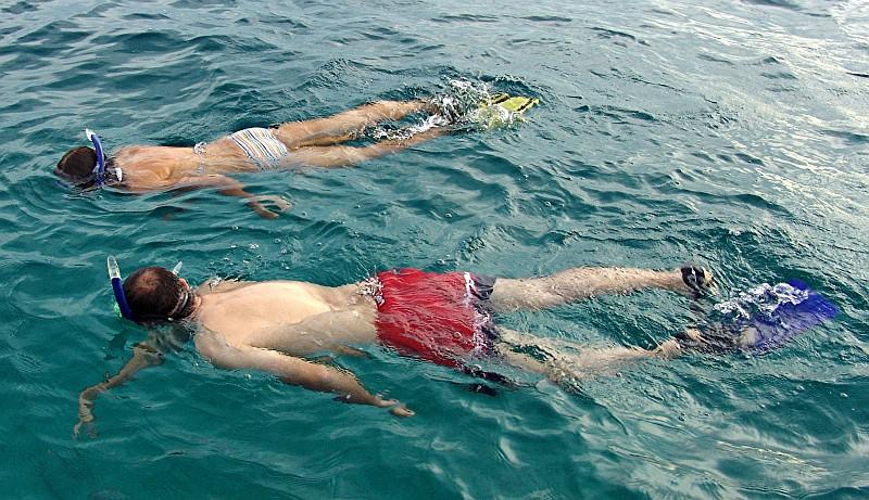 Schnorcheln am Cayo Coral Bocas del Toro, Panama
