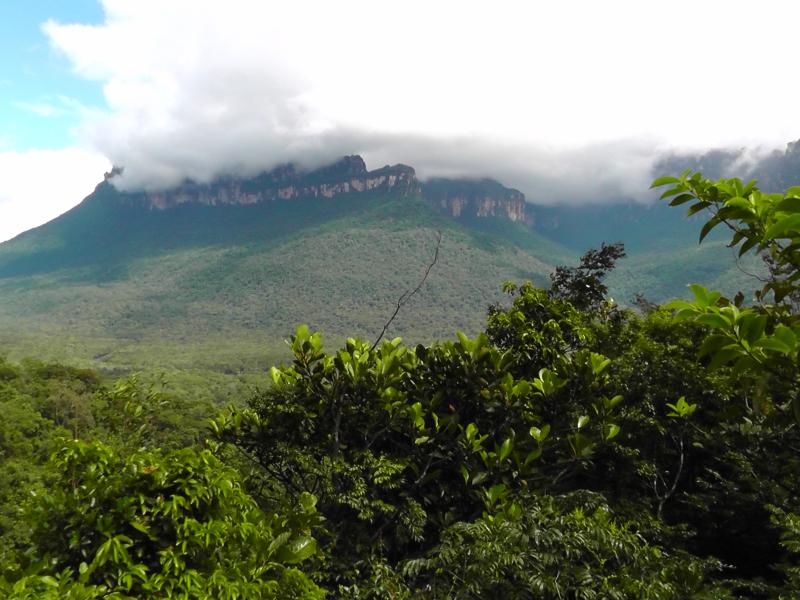 Tafelberge in Canaima, Venezuela