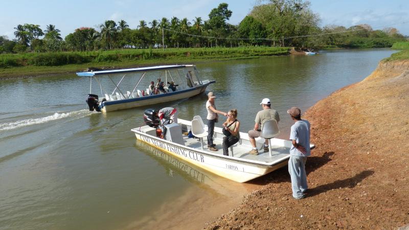Bootsafari Rio Frio bei Caño Negro, Costa Rica