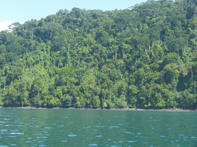 Golfo Dulce Golfito, Costa Rica
