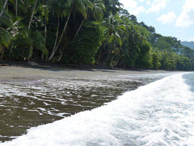 Ufer Golfo Dulce Golfito, Costa Rica