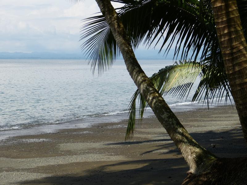 Strand Golfo Dulce Golfito, Costa Rica