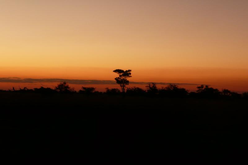 Sonnenuntergang Esteros del Iberá, Argentinien
