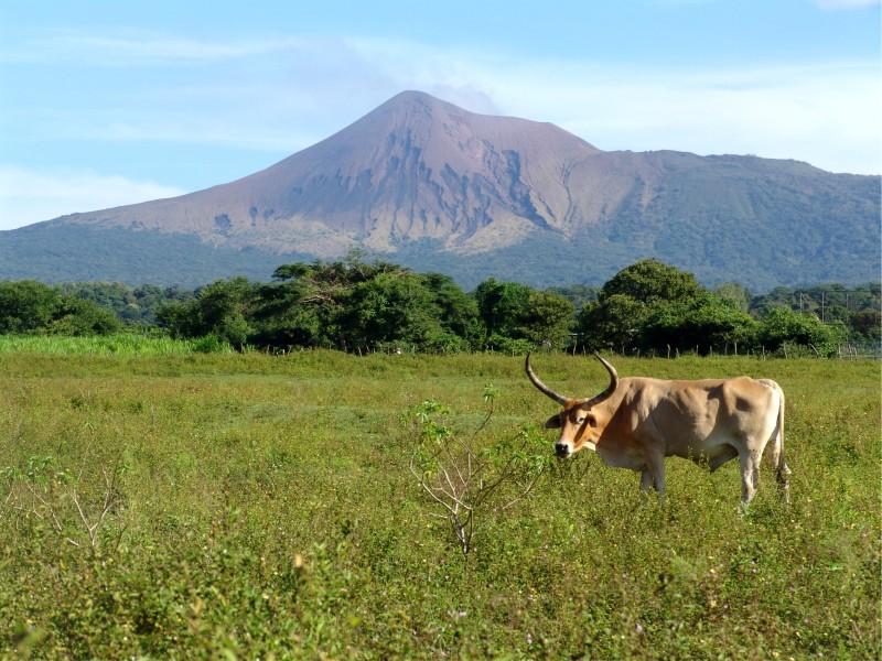 Vulkan Telica, Leon, Nicaragua