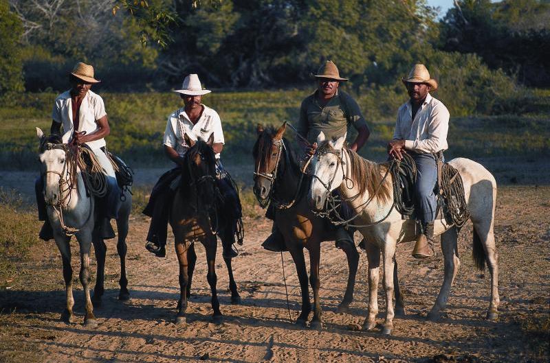 Venezolanische Gauchos, Los Llanos, Venezuela
