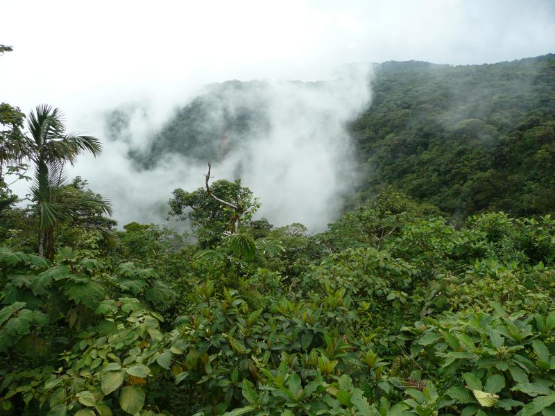 Tilaran Gebirge im Monteverde Regenwald Costa Rica, Reiseinformationen Costa Rica