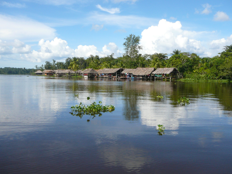 Häuser der Waroa, Orinoco Delta, Venezuela