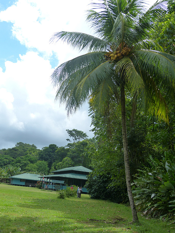 Forschungsstation in Nationalpark Corcovado Halbinsel Osa, Costa Rica
