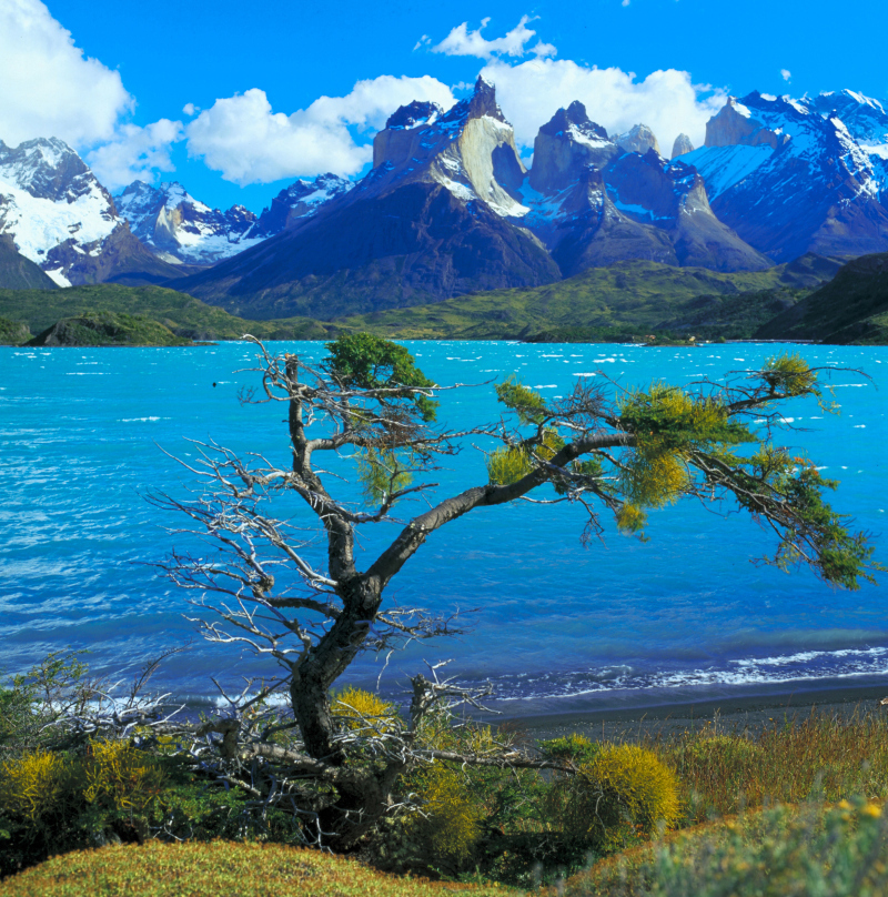 Nationalpark Torres del Paine, Patagonien, Chile
