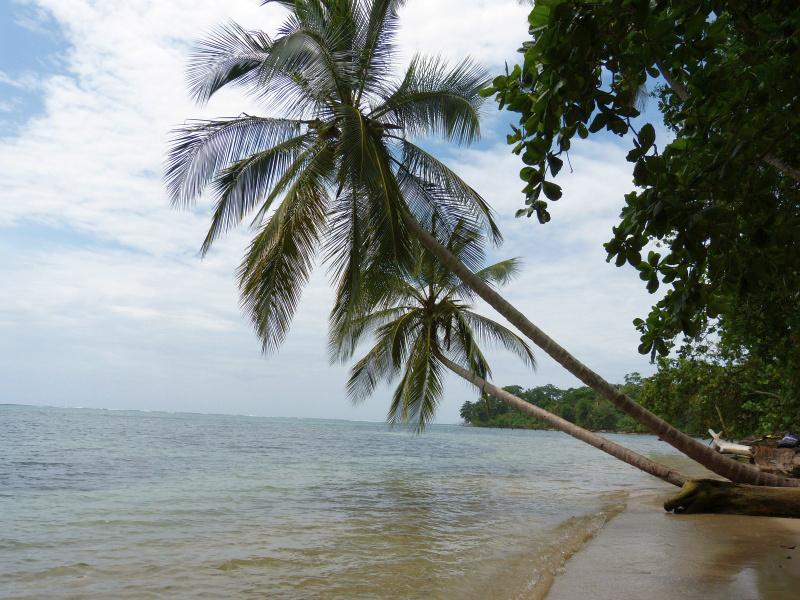 traumhafter Strand Playa Cocles Karibik, Costa Rica