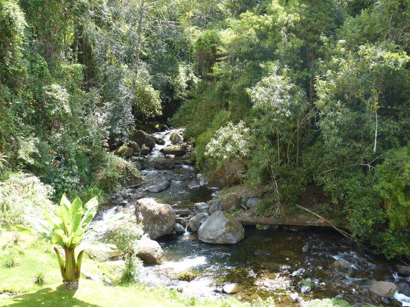 Rio Savegre in Region San Gerado de Dota, Costa Rica