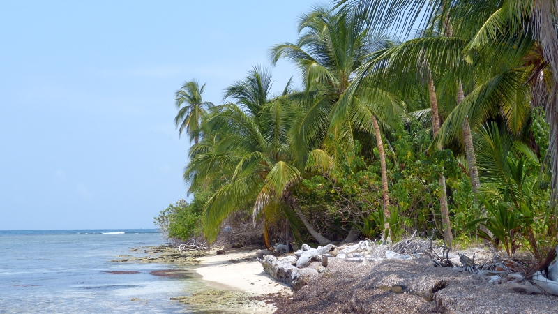 toller Strand der San Blas Inseln Panama