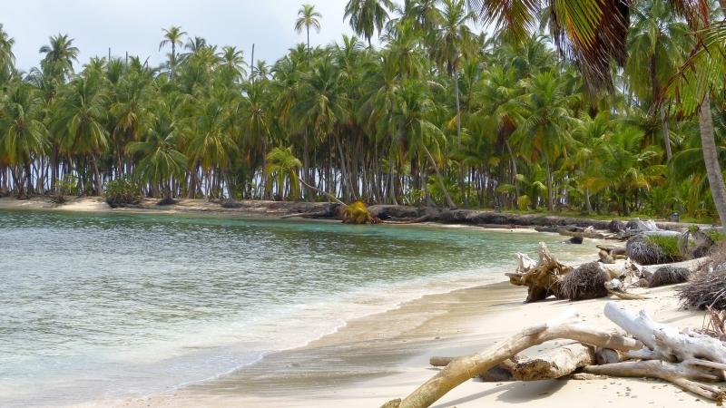 Insel Arrida der San Blas Inseln Panama
