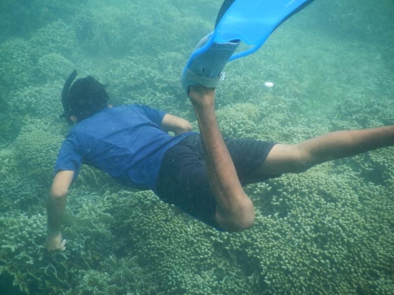 Schnorcheln Korallenriffe San Blas Inseln Panama