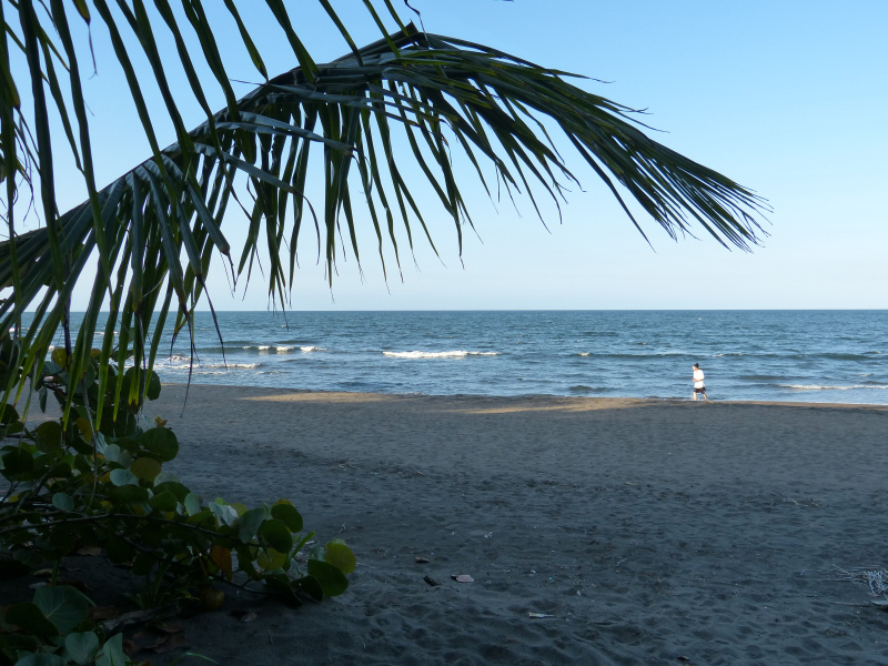Strand Playa im Nationalpark Tortuguero, Costa Rica
