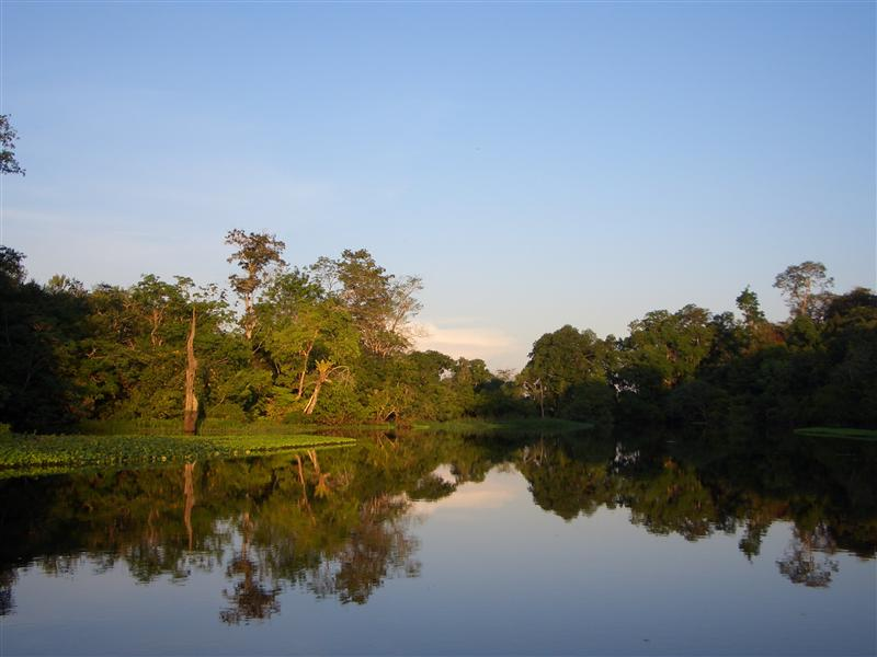 Amazonas, Manaus, Brasilien