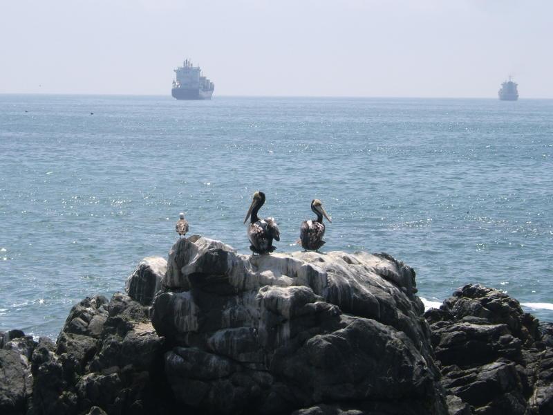 Lauftipp Viña del Mar, Chile