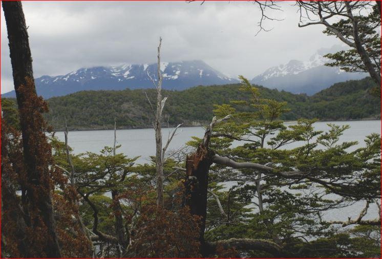 Nationalpark Tierra del Fuego Argentinien
