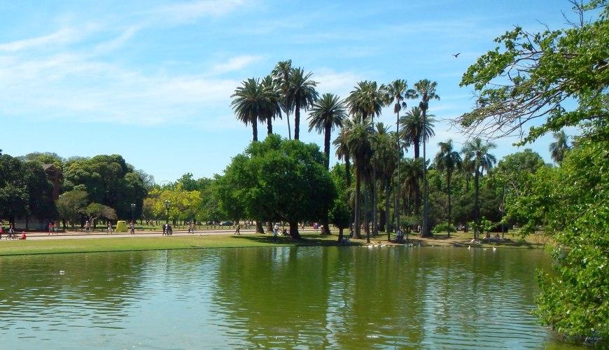 Palmen im Palermo-Park Buenos Aires