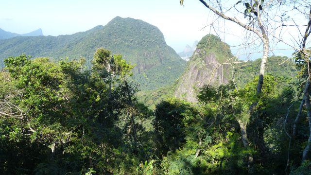 Natur in Rio de Janeiro