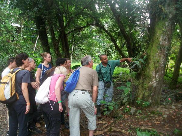 ökologische Projekte